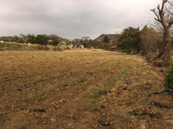 San Andrés,Tlayacapan,Morelos,Terreno,1093,venta casas,piscina,bienes raices,inmobiliaria