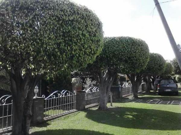 Lomas de Cocoyoc,Morelos,4 Recámaras Recámaras,Casa,1114,venta casas,piscina,bienes raices,inmobiliaria