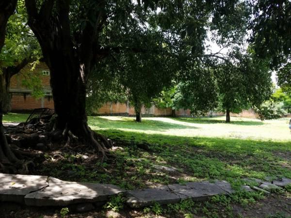 Cuautla,Morelos,Terreno,1145,venta casas,piscina,bienes raices,inmobiliaria