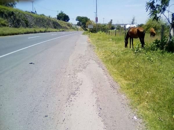 libramiento cuautla,cuautlixco,Morelos,Terreno,1159,venta casas,piscina,bienes raices,inmobiliaria