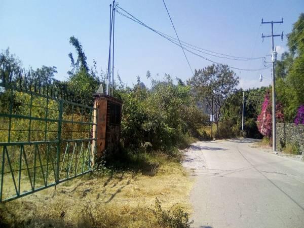 Tepoztlan,Morelos,Terreno,1163,venta casas,piscina,bienes raices,inmobiliaria