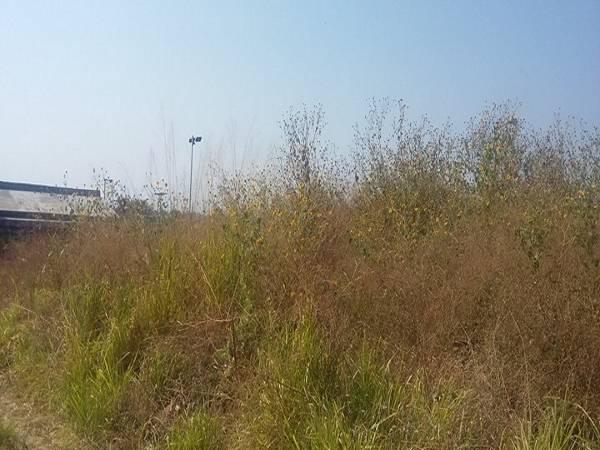 Lomas de Cocoyoc,Morelos,Terreno,1189,venta casas,piscina,bienes raices,inmobiliaria